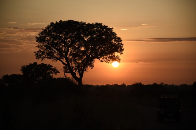 Safari sunrise in Kruger National Park