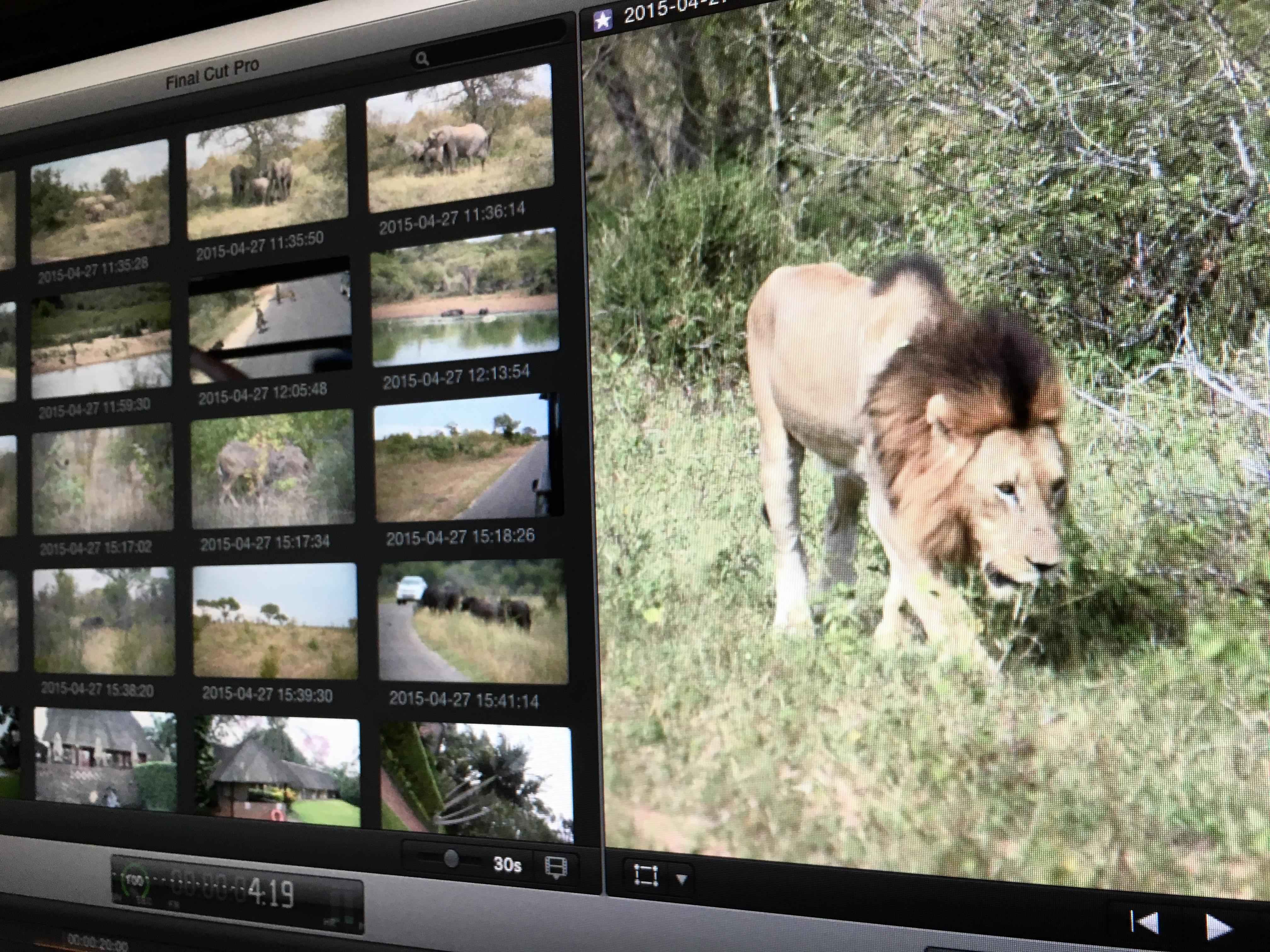 Kruger Park Media in Final Cut Pro X